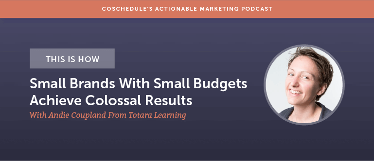 This Is How Small Brands With Small Budgets Achieve Colossal Results With Andie Coupland From Totara Learning [AMP 146]