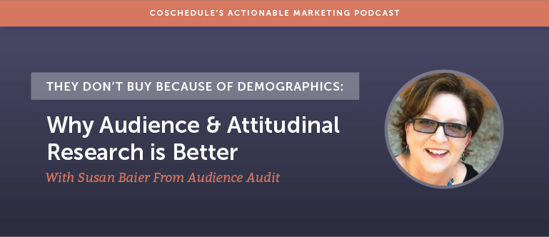 They Don't Buy Because Of Demographics: Why Audience And Attitudinal Research Is Better With Susan Baier From Audience Audit [AMP 164]