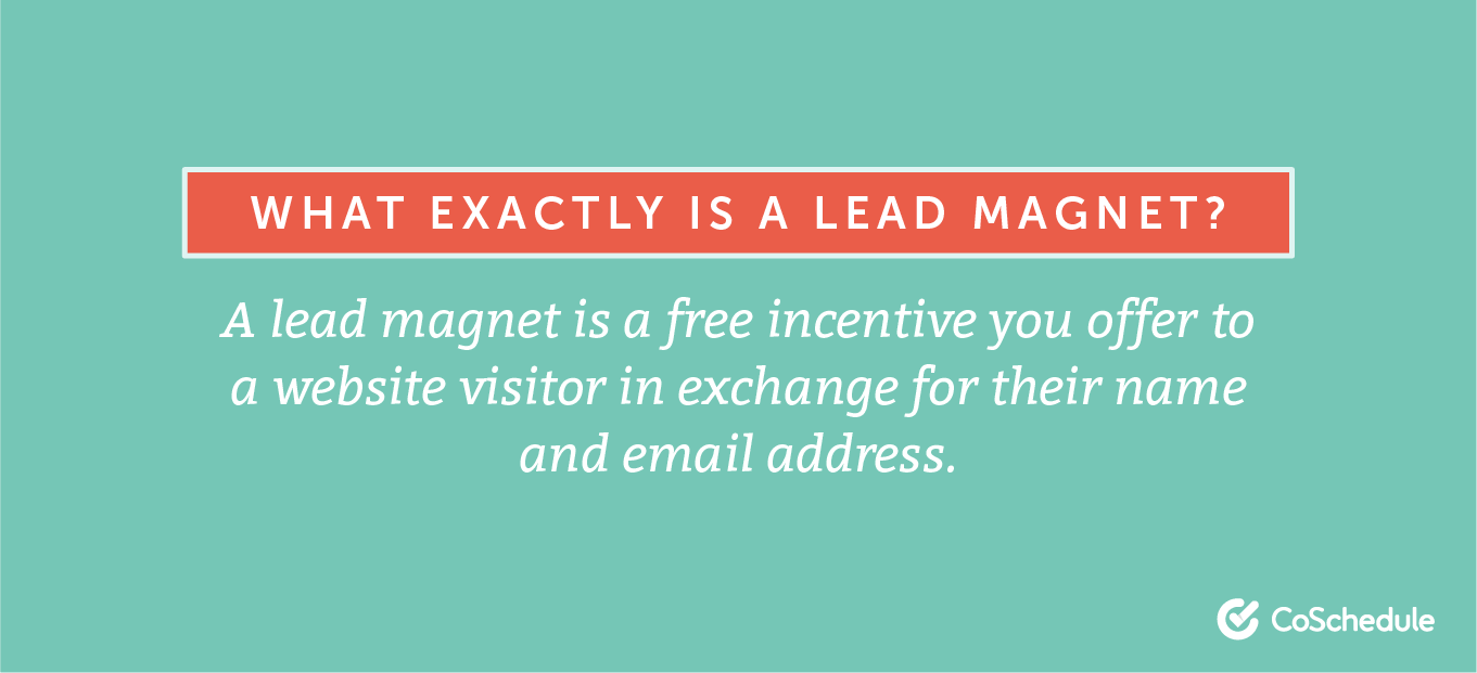 Definition of a lead magnet