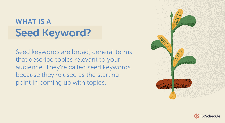 Seed keyword definition