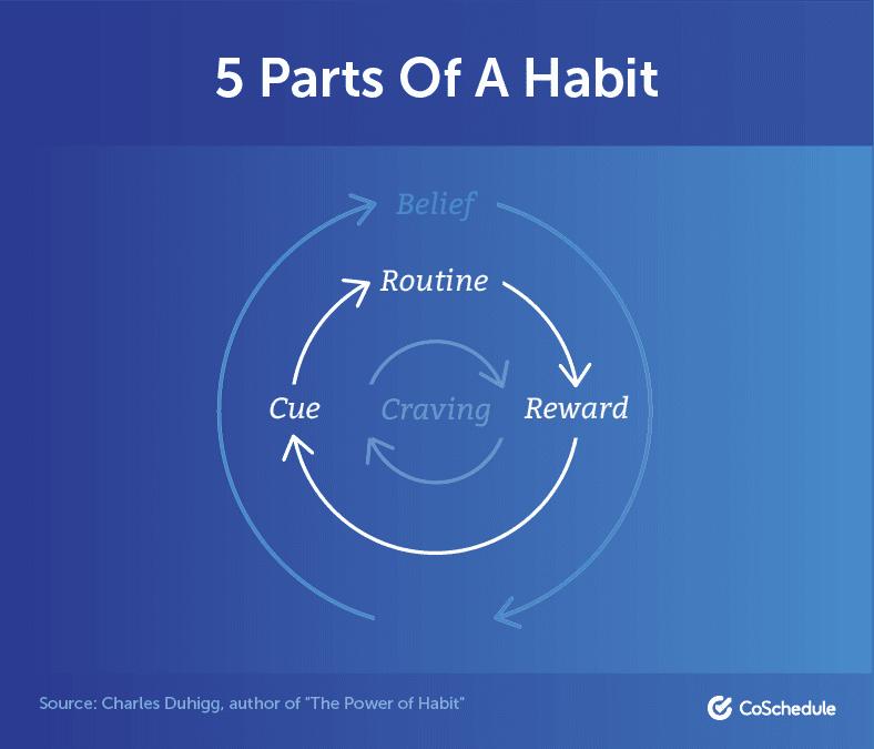 5 Parts of a Habit