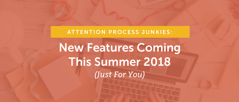 Attention Process Junkies: New Features Coming This Summer 2018 (Just For You)