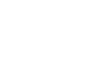 UofSC Alumni Logo