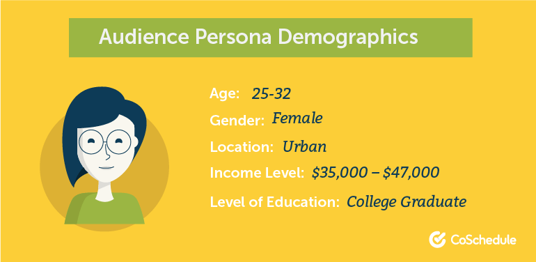 Audience Persona Demographics