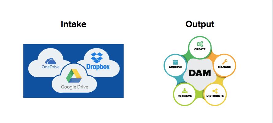 Intake vs Output