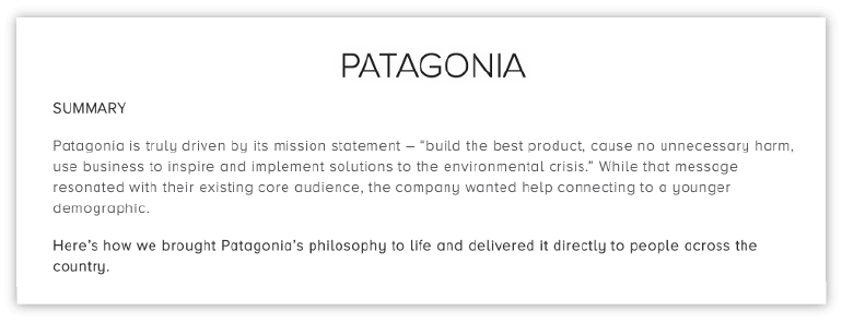 Patagonia executive summary example