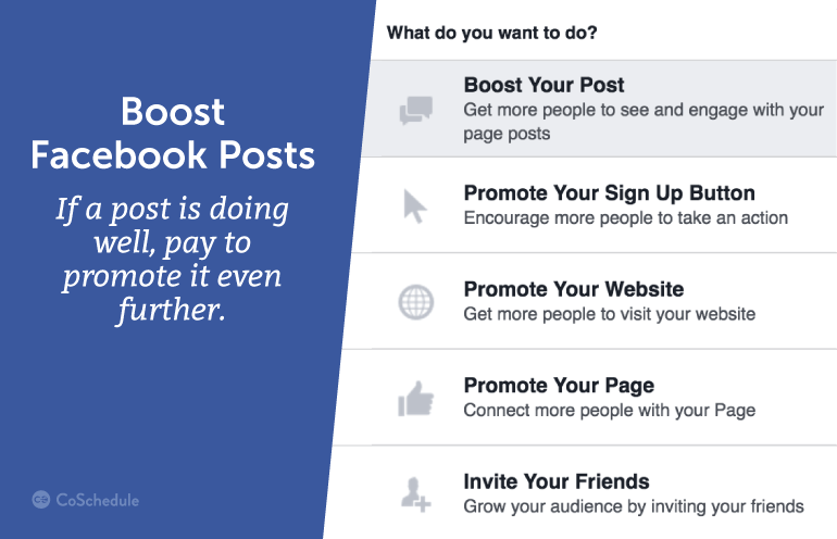 If a post is doing well, pay to promote it even further.