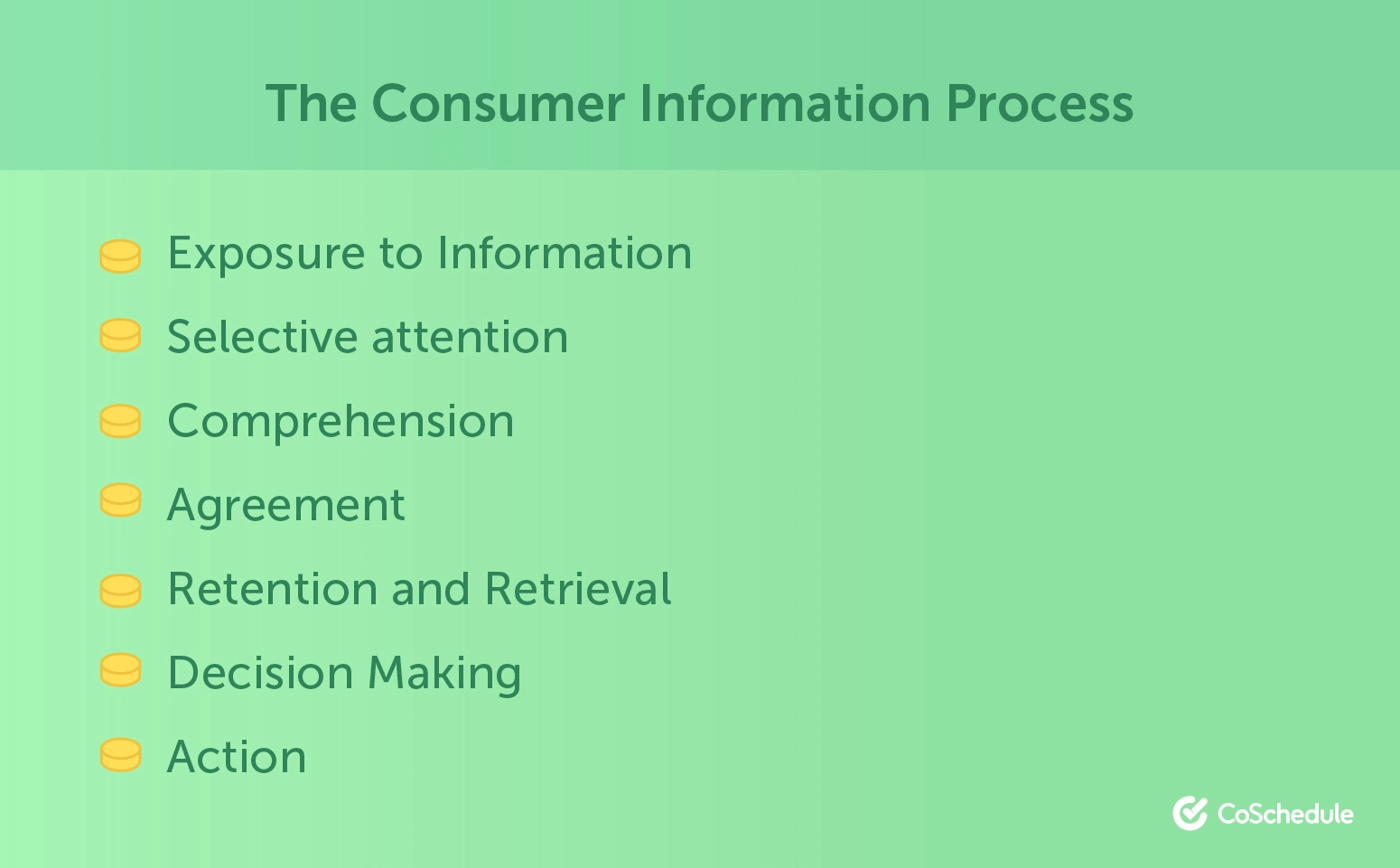 The Consumer Information Process