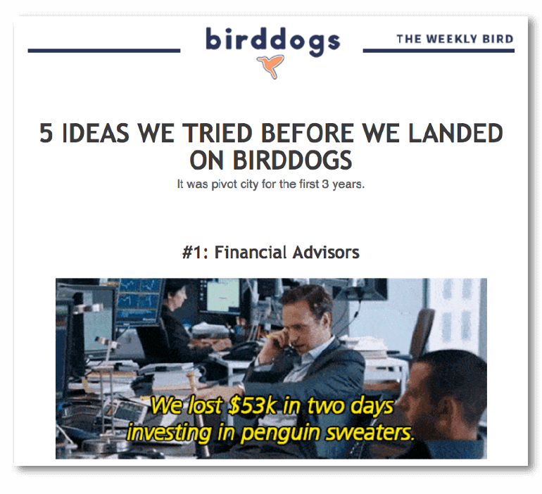 Creative email headline example from Bird Dogs