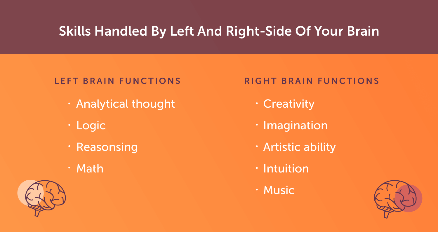 Tasks handled by the left brain vs the right