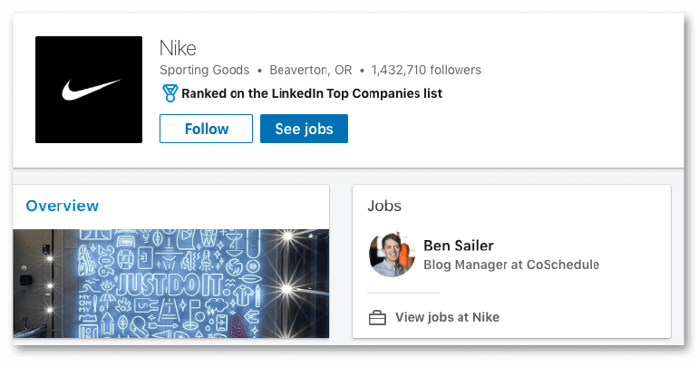 Example of a LinkedIn Overview Tab