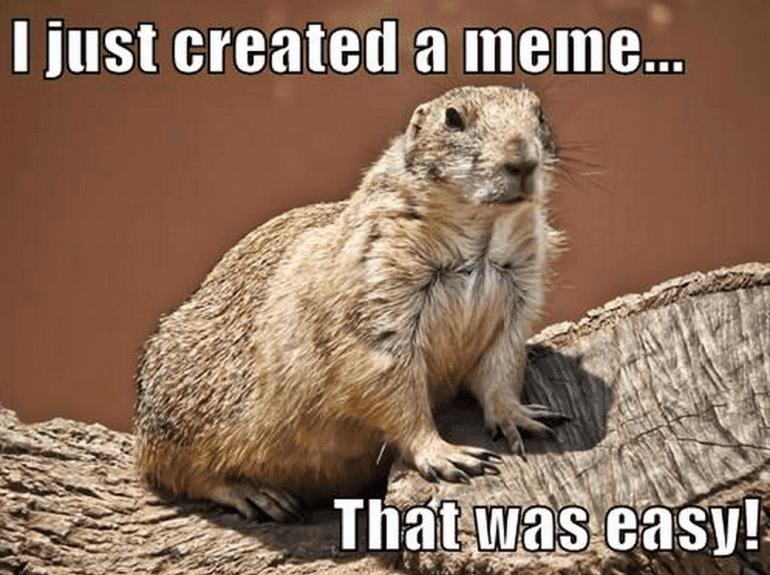 make-a-meme-1