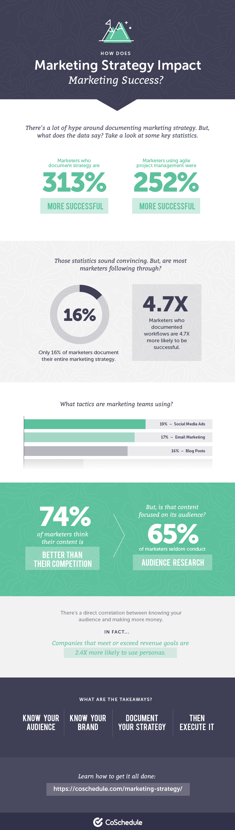 Marketing Strategy Guide Infographic