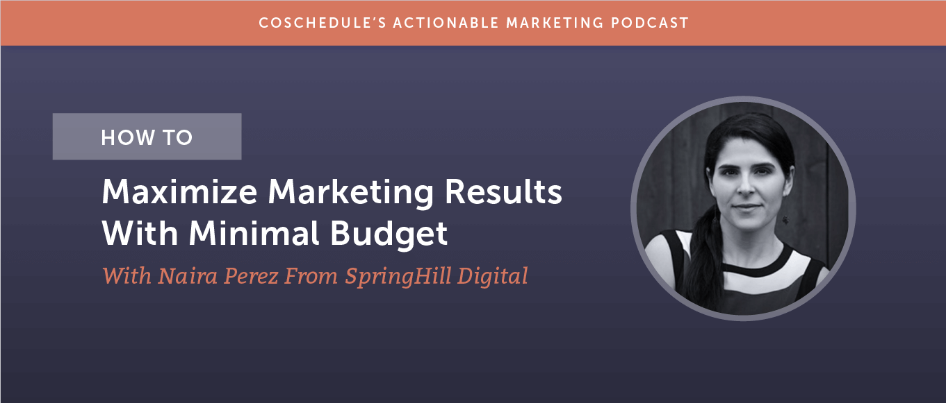 How to maximize marketing results with minimal budget with Naira Perez from SpringHill Digital header