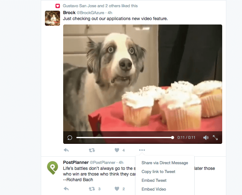 Example of directly uploaded video on Twitter