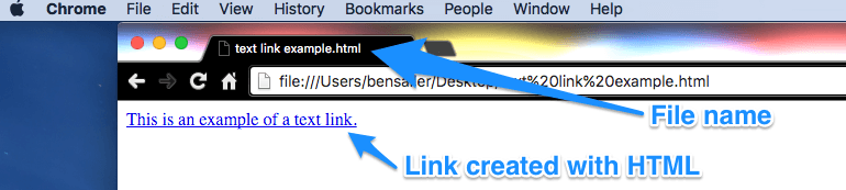 Opened HTML file in web browser