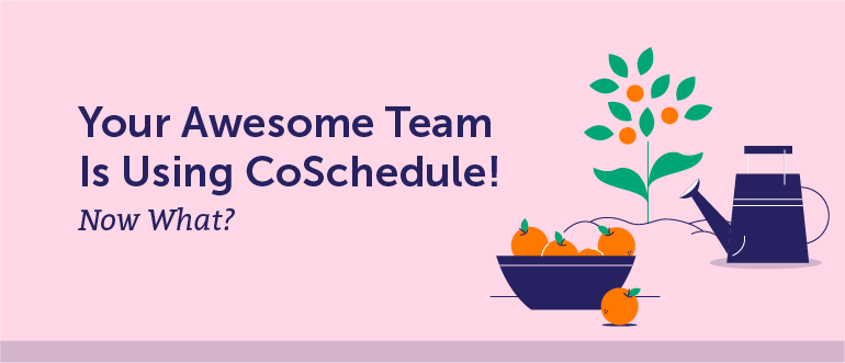 Your Awesome Team is Using CoSchedule! Now What?