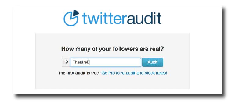 Twitter Audit homepage.