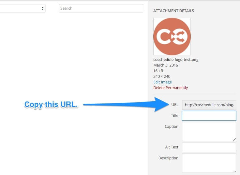 Image URL location in WordPress