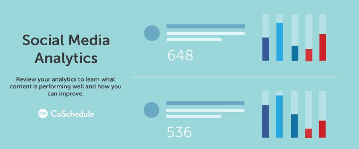 WordPress VIP social media analytics
